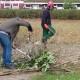 Gartentage2 Kopie